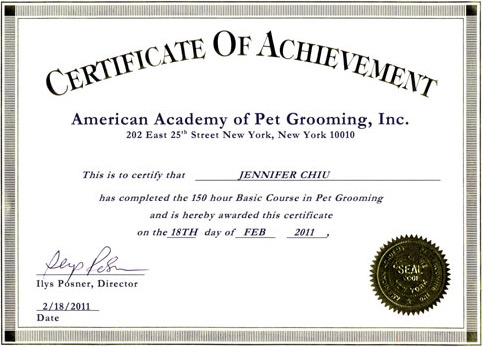 dog grooming certification | chelsea dog walking & training ...